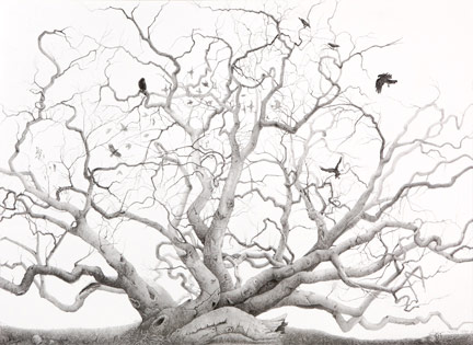 Jean LeCluyse Heirophany - Illsutration of a dead tree and black birds